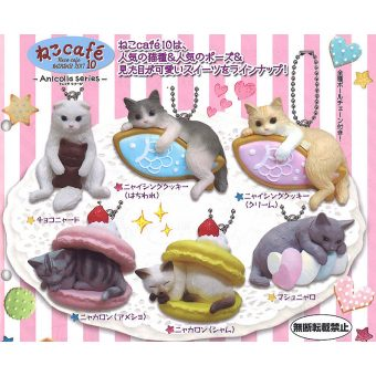 Anicolla series Cat Cafe wave 10 Mini Cat Figure Collection