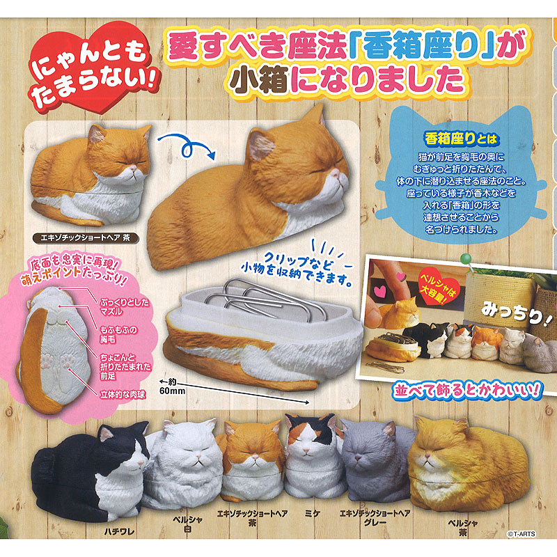 Cat Loaf Small Trinket Box Figure Collection  Design 4